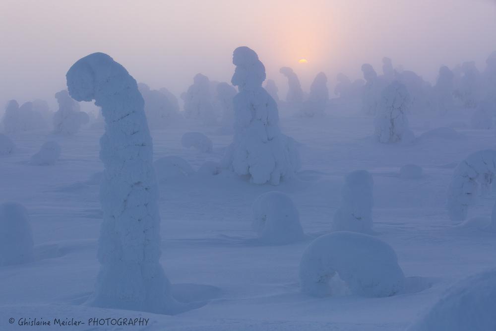 Finlande-787.jpg