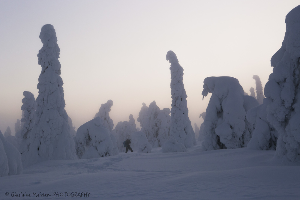 Finlande-843.jpg