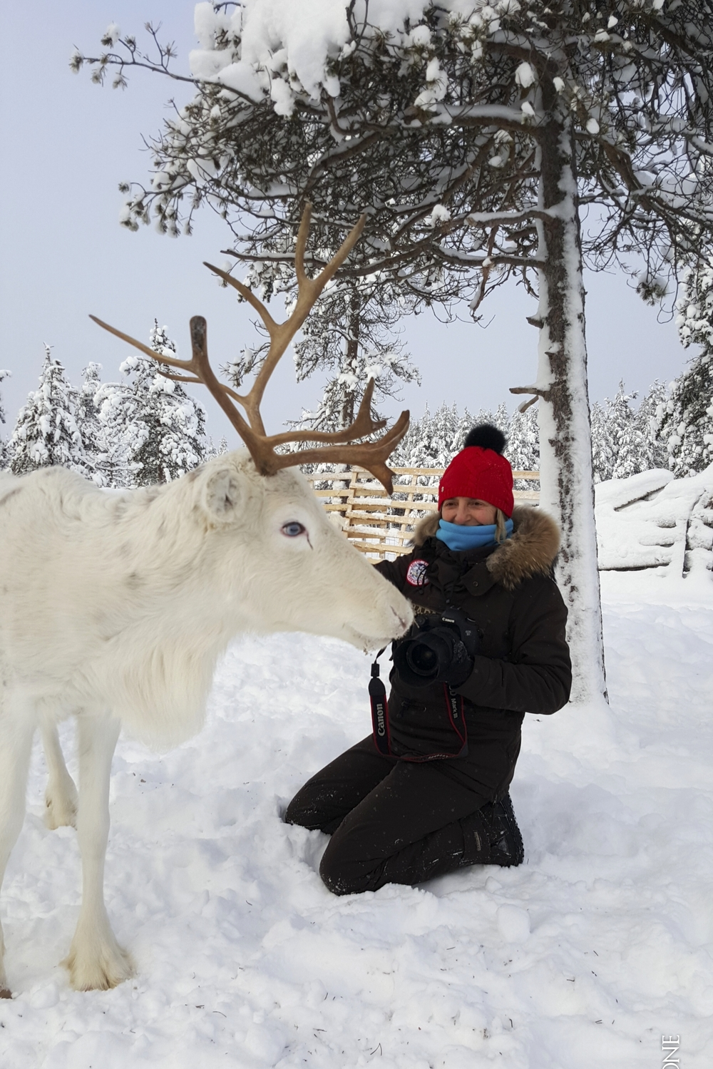 Phil-Finlande 94.jpg