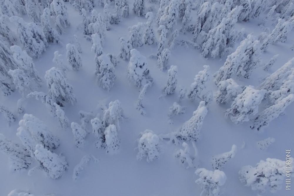Phil-Finlande 5.jpg