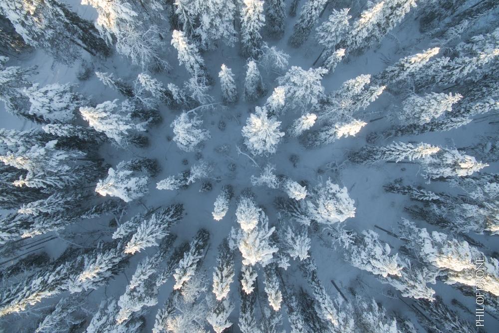 Phil-Finlande 162.jpg