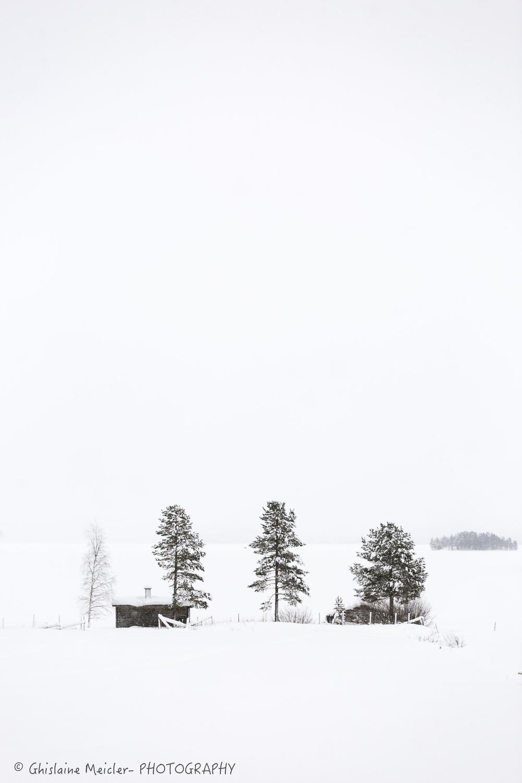 Finlande-533.jpg