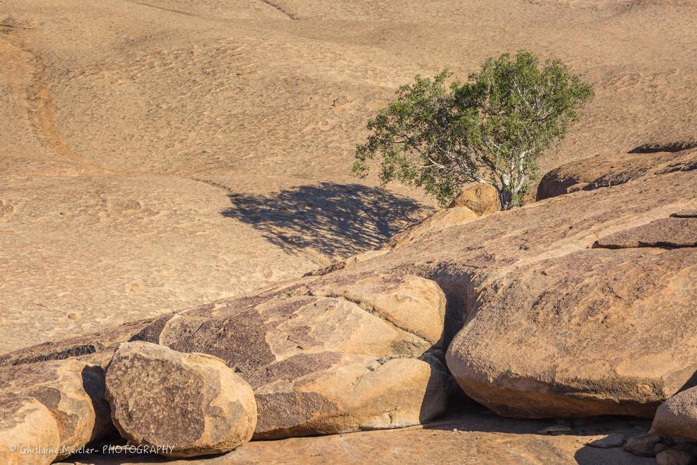 Namibie- 6188-7.jpg