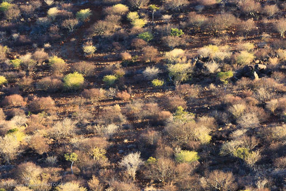 Namibie- 6243-13.jpg