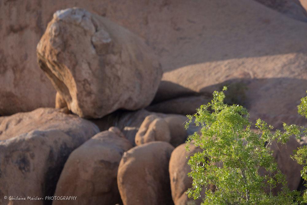 Namibie- 9092.jpg