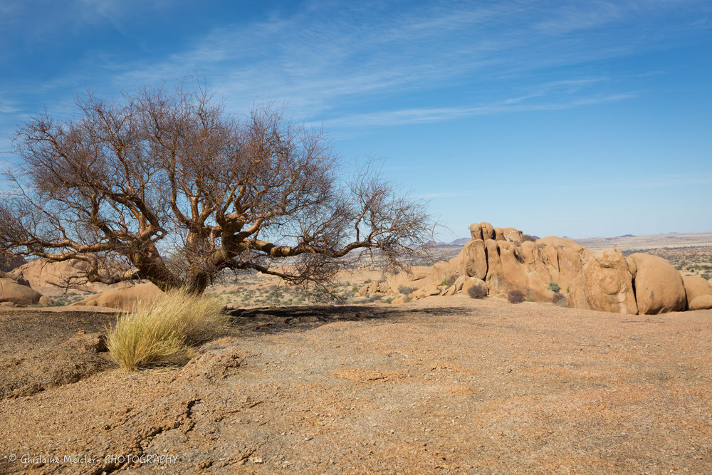 Namibie- 9119.jpg