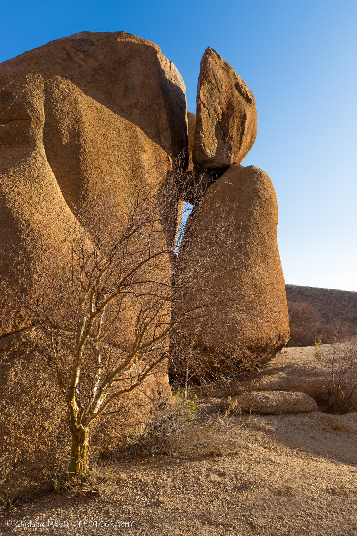 Namibie- 8861-HDR.jpg