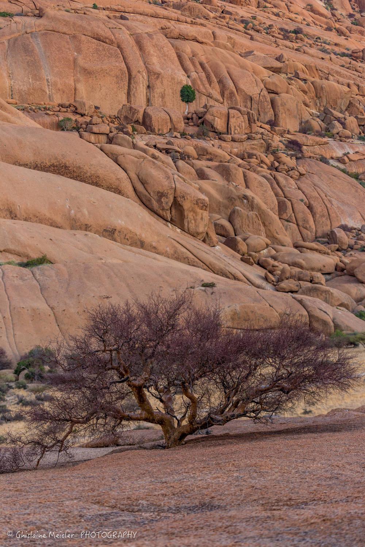 Namibie- 9977.jpg