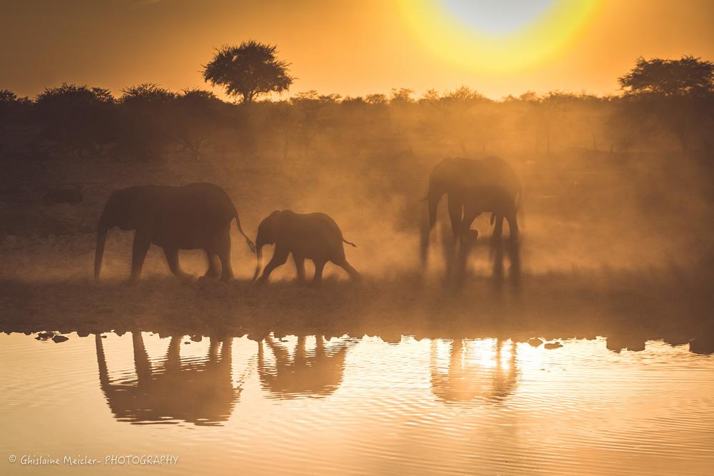 Namibie- 6950.jpg
