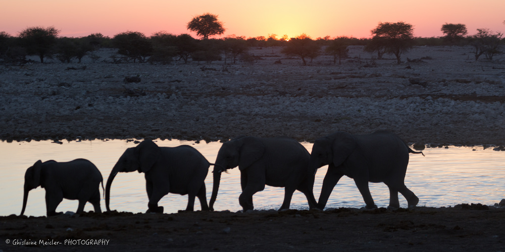 Namibie- 7008.jpg