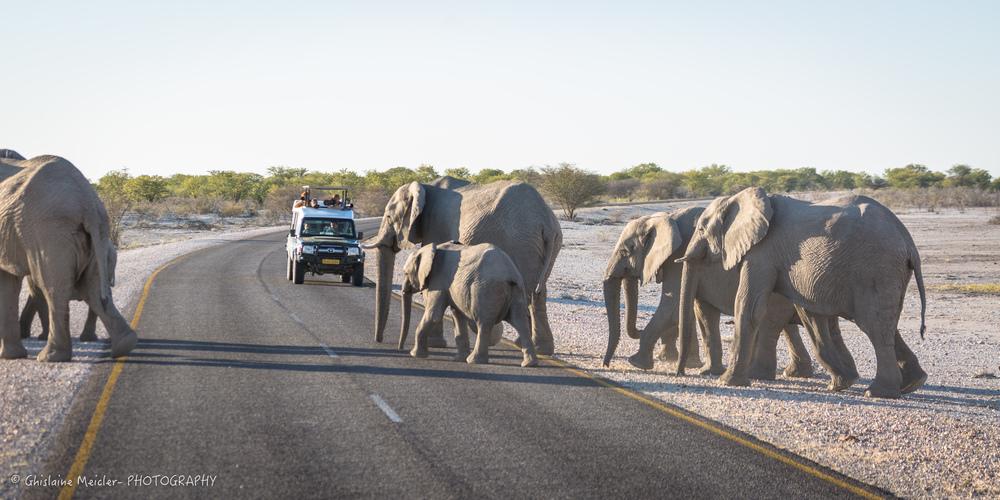 Namibie- 6784.jpg