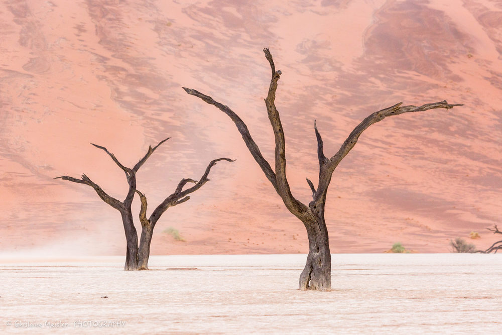 Namibie- 12443.jpg