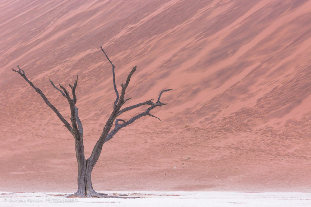 Namibie- 12412.jpg