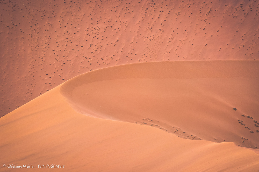 Namibie- 12622-Modifier.jpg