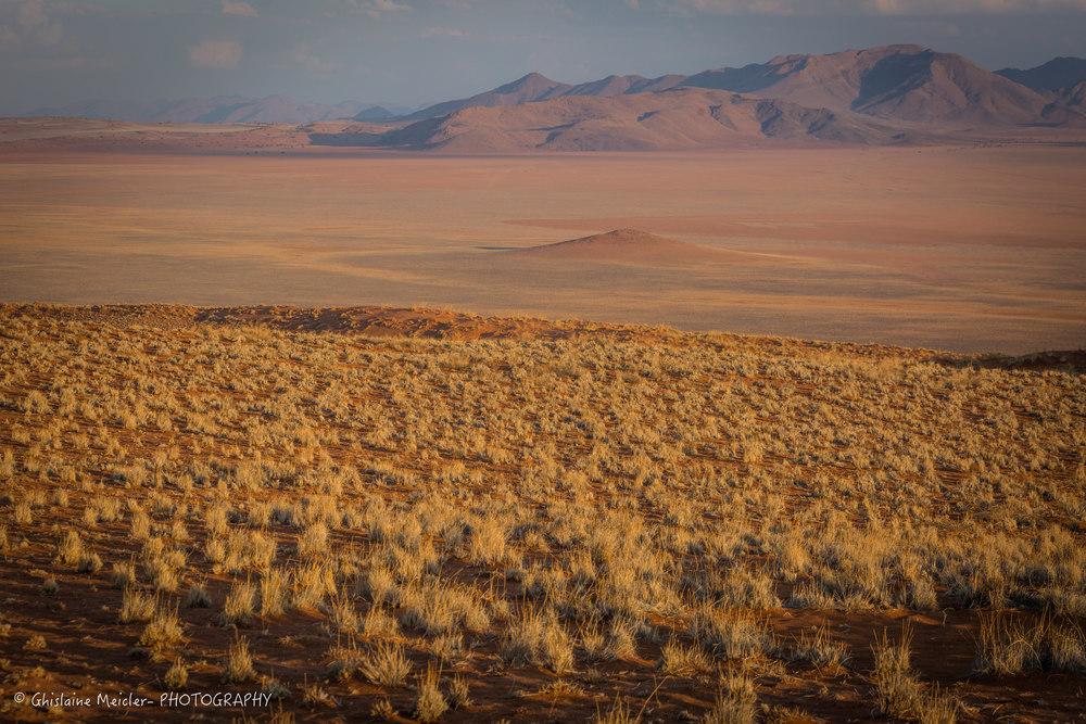 Namibie- 13097.jpg