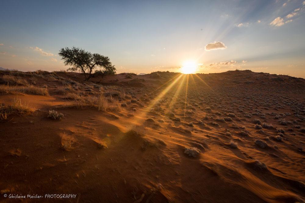 Namibie- 13103.jpg