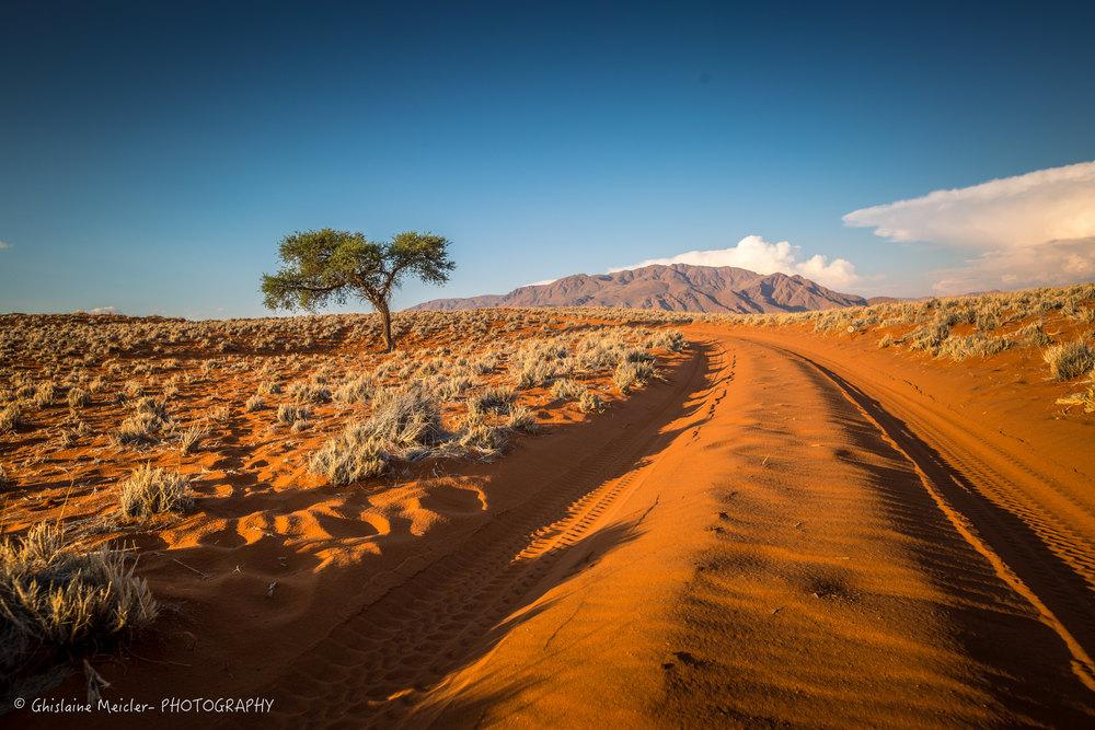 Namibie- 13047.jpg
