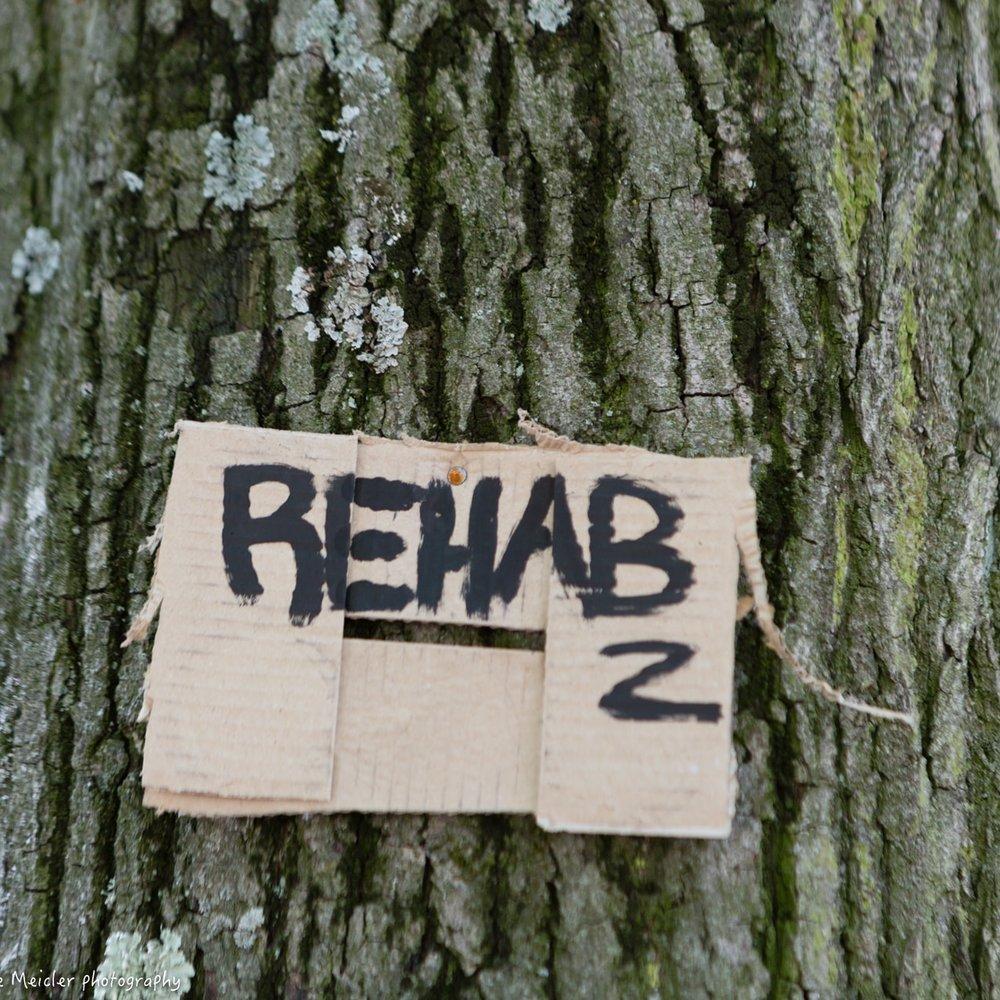 Rehab2- Cité U - 38625.jpg