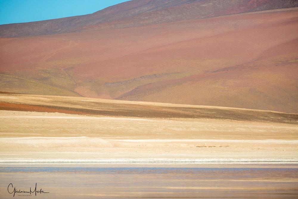 Chili37030.jpg