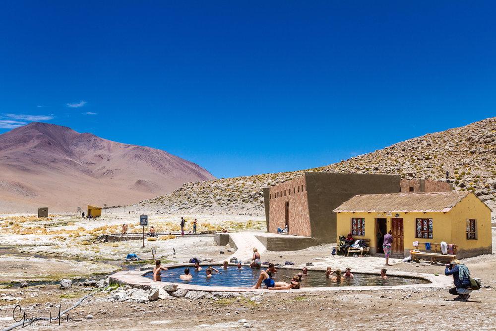 Chili41599.jpg
