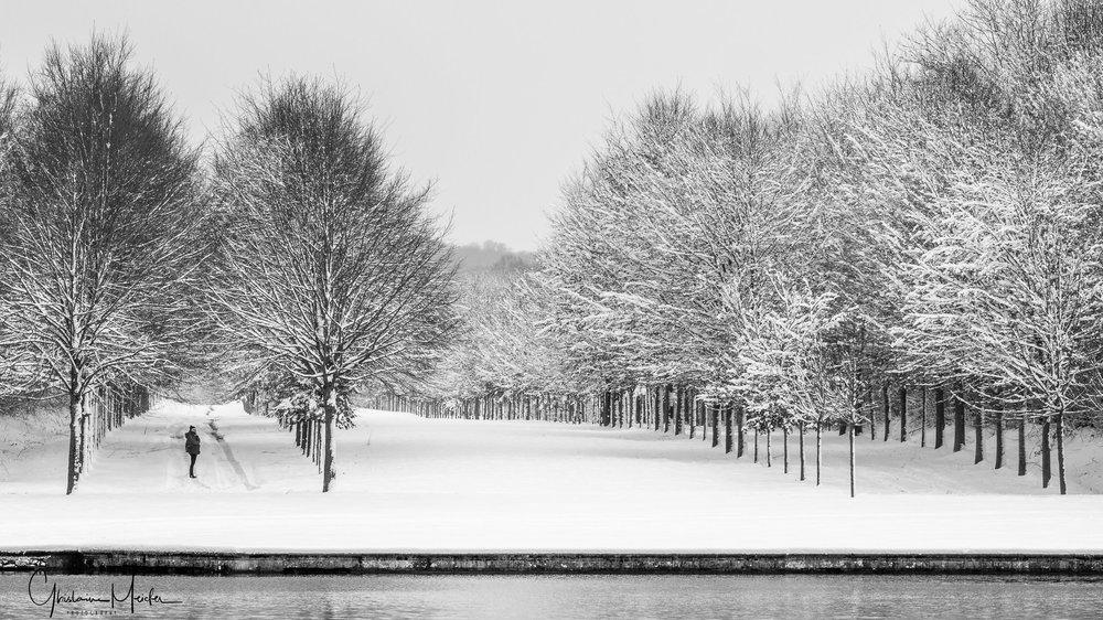 Versailles neige-44833.jpg