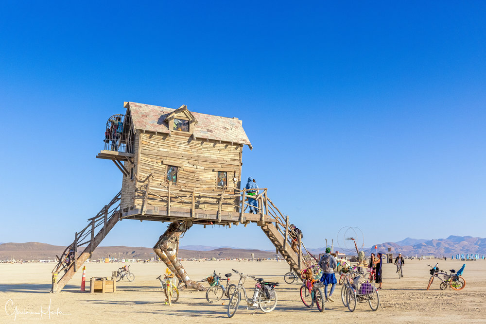 Burning Man 2018--55448-Modifier-Modifier.jpg