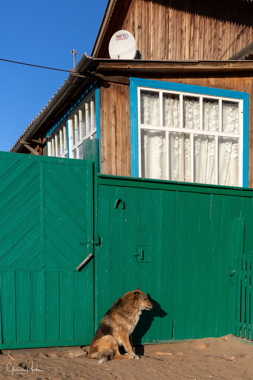 Baikal-65475-Modifier.jpg