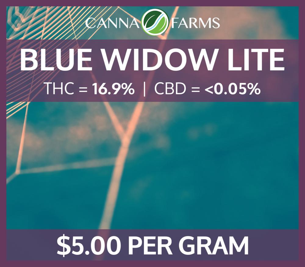 Blue_Widow_Lite_16.9THC_5.00PERGRAM.png