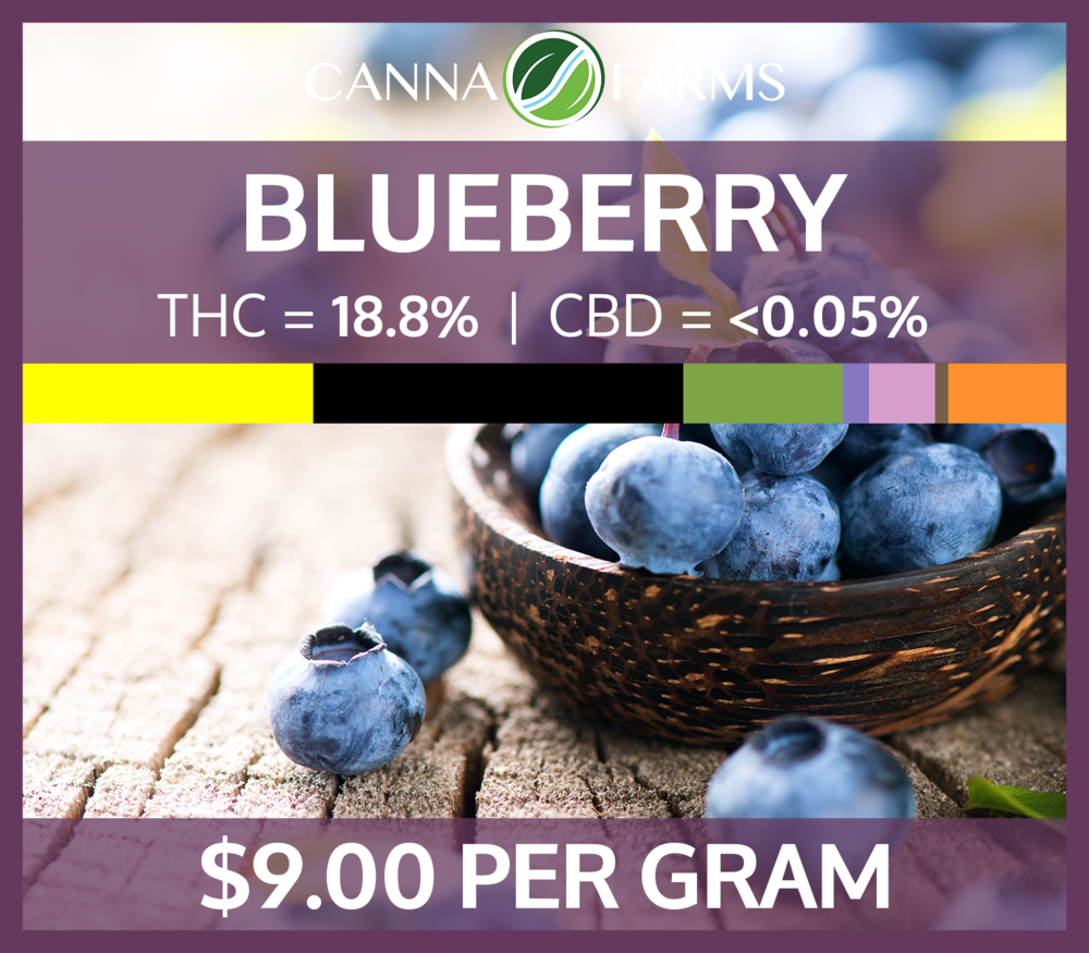 Blueberry_9.00PERGRAM_18.8THC_Terps.png