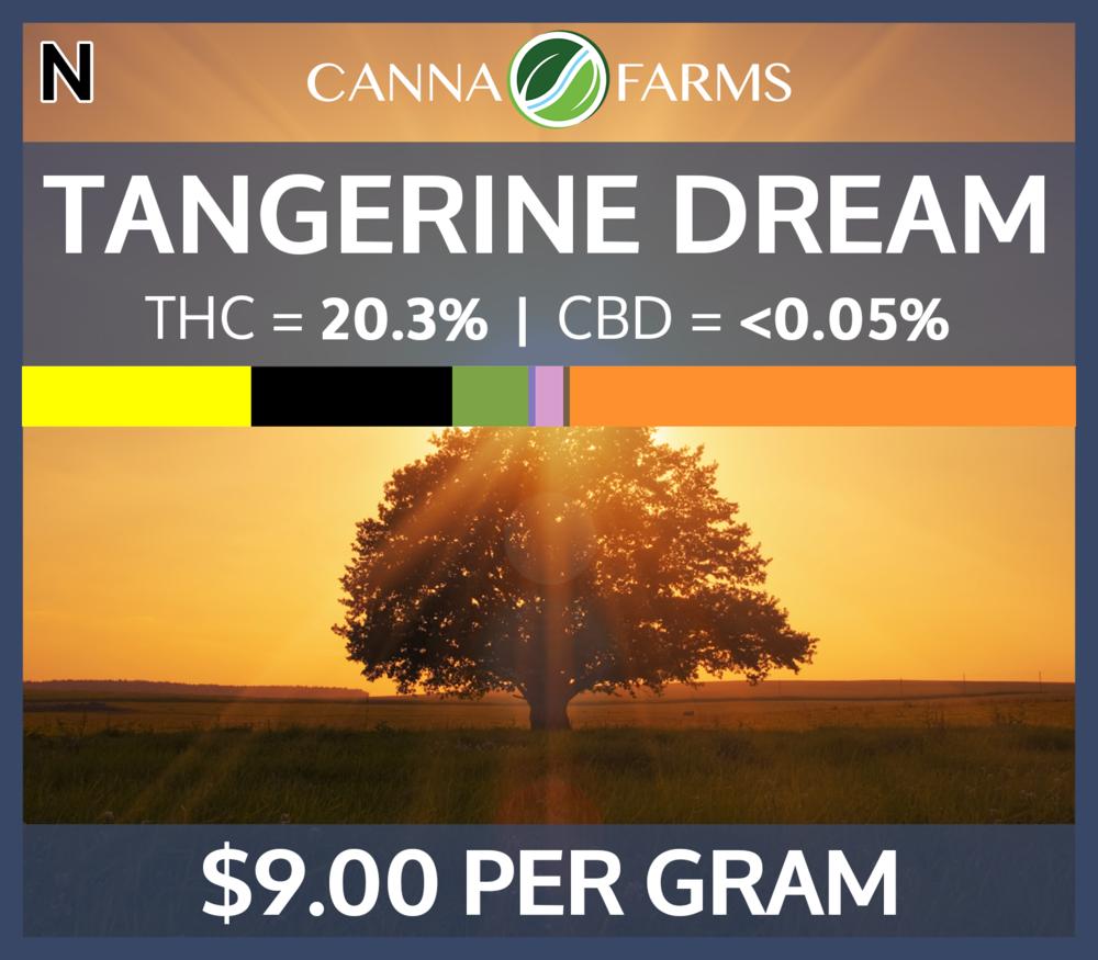 Tangerine_Dream_20.3THC_900PERGRAM.png