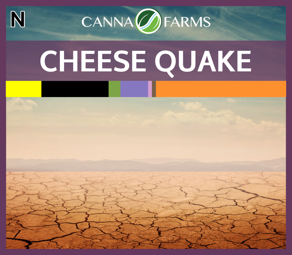 Cheese_Quake_Blank.png