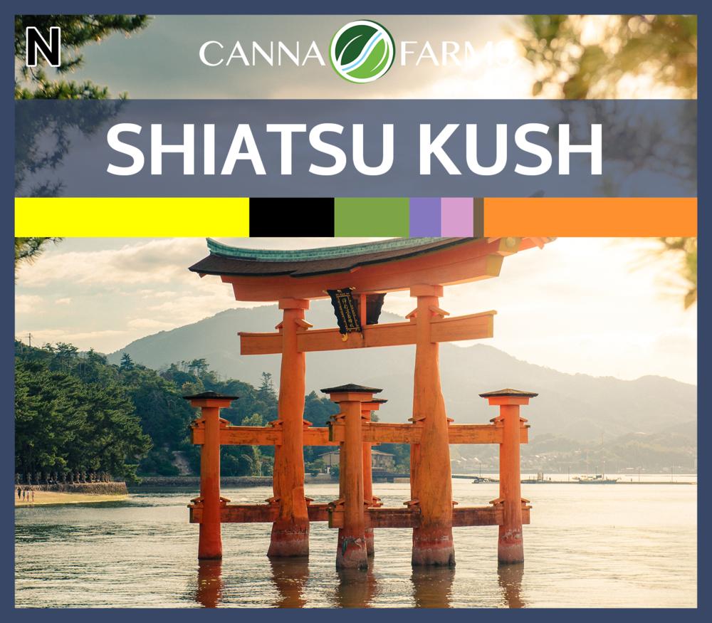 Shiatsu_Kush_Blank.png