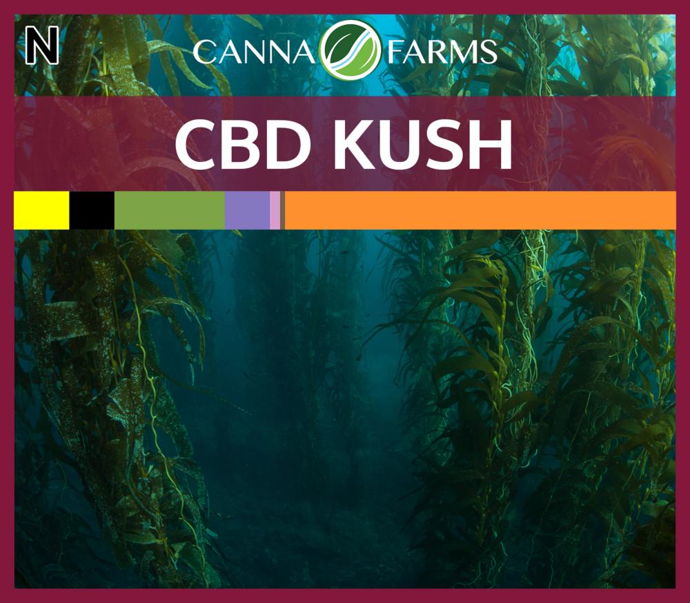 THC = 4.7-7.2% | CBD = 6.3-9.9% | $8.00/g