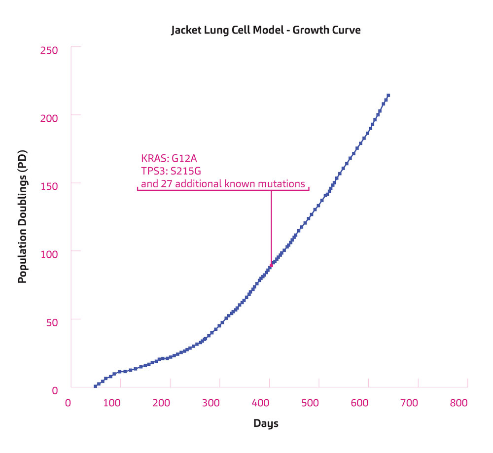 CellModel_PopulationCharts_Jacket.jpg