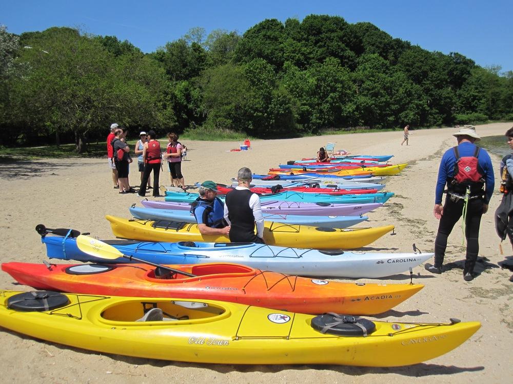 Oyster Bay kayaks.jpg