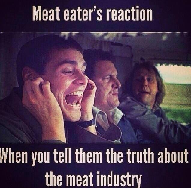 vegan meme 4.jpg