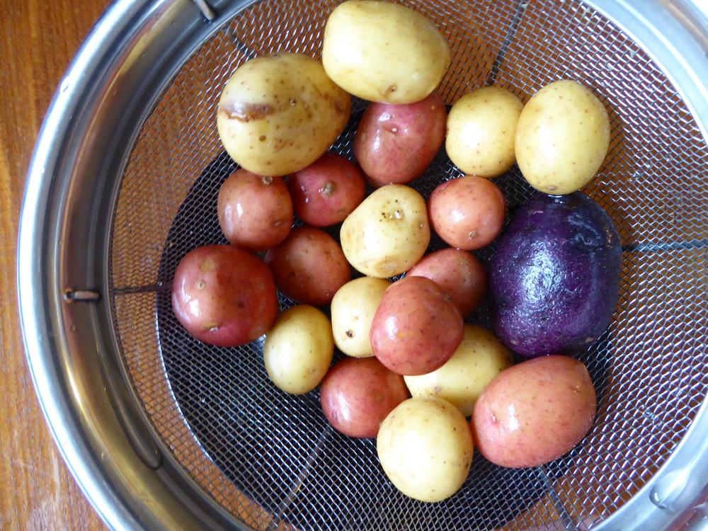 simple roasted potatoes 2
