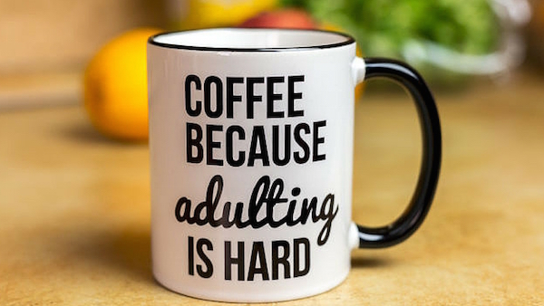 adulting mug for blog_june.jpg