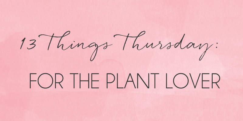 13 THINGS FOR THE PLANT LOVER