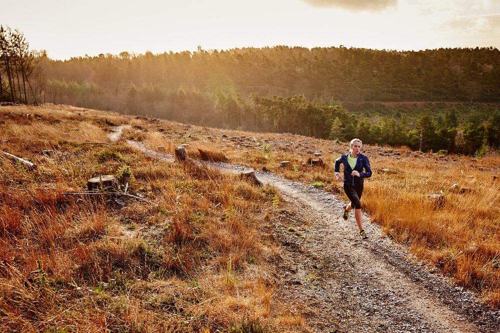 Haldon-trail-22.jpg