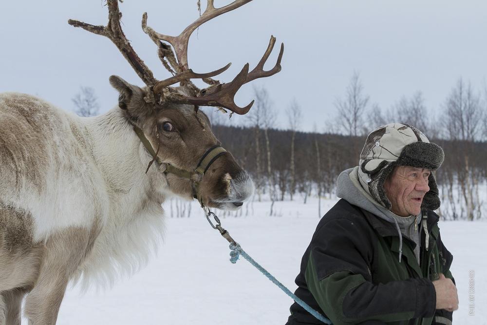 Laponie 2014-10-PhM-2.jpg