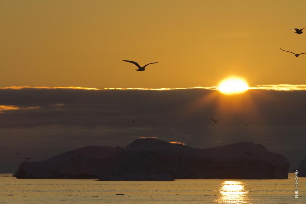 14-08 balade fjord illulisat-7-PhM.jpg