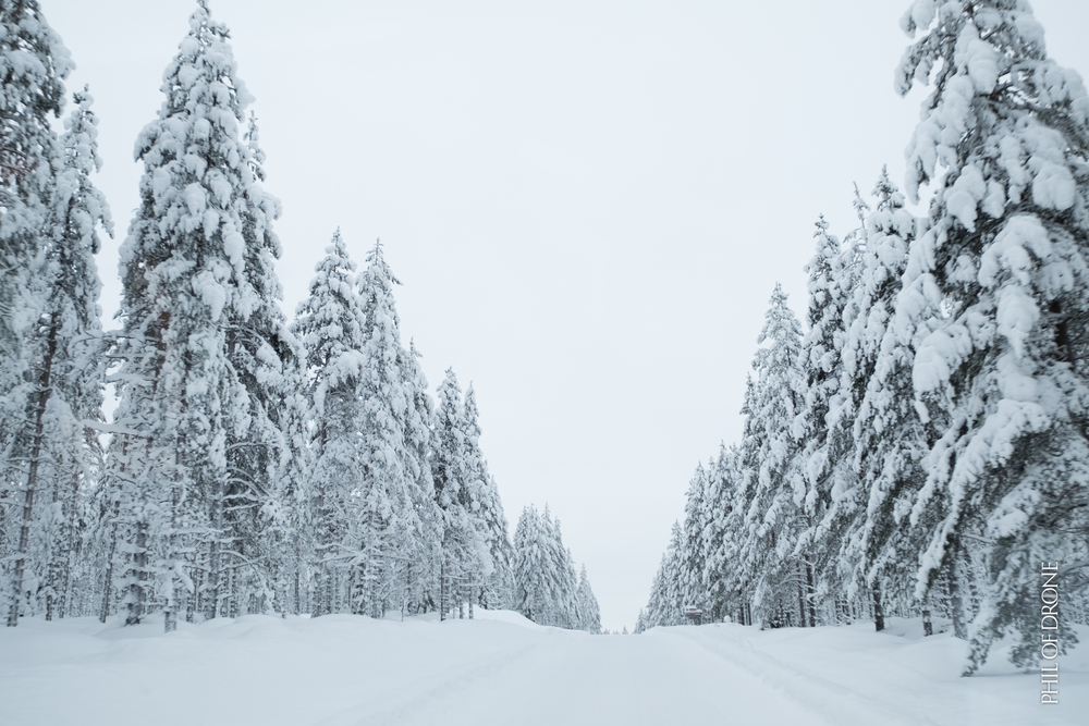 Finlande 2016-1-PhM-7.jpg