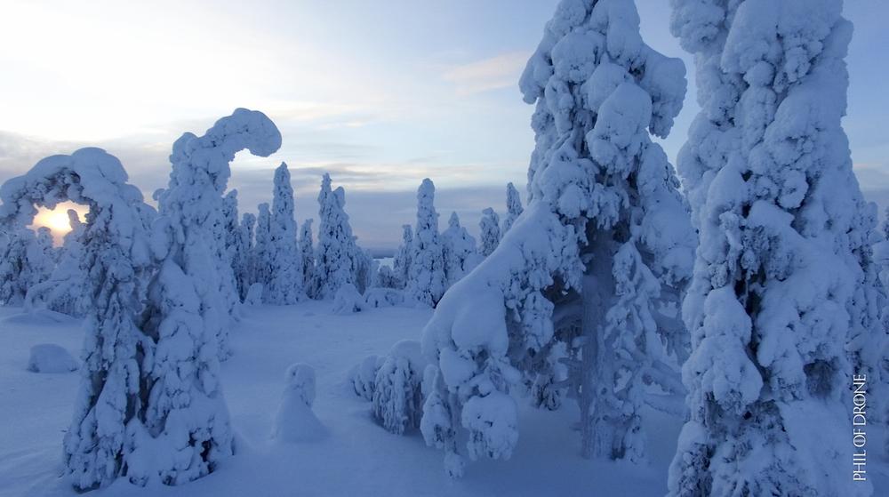 Finlande 2016-1-PhM-4.jpg