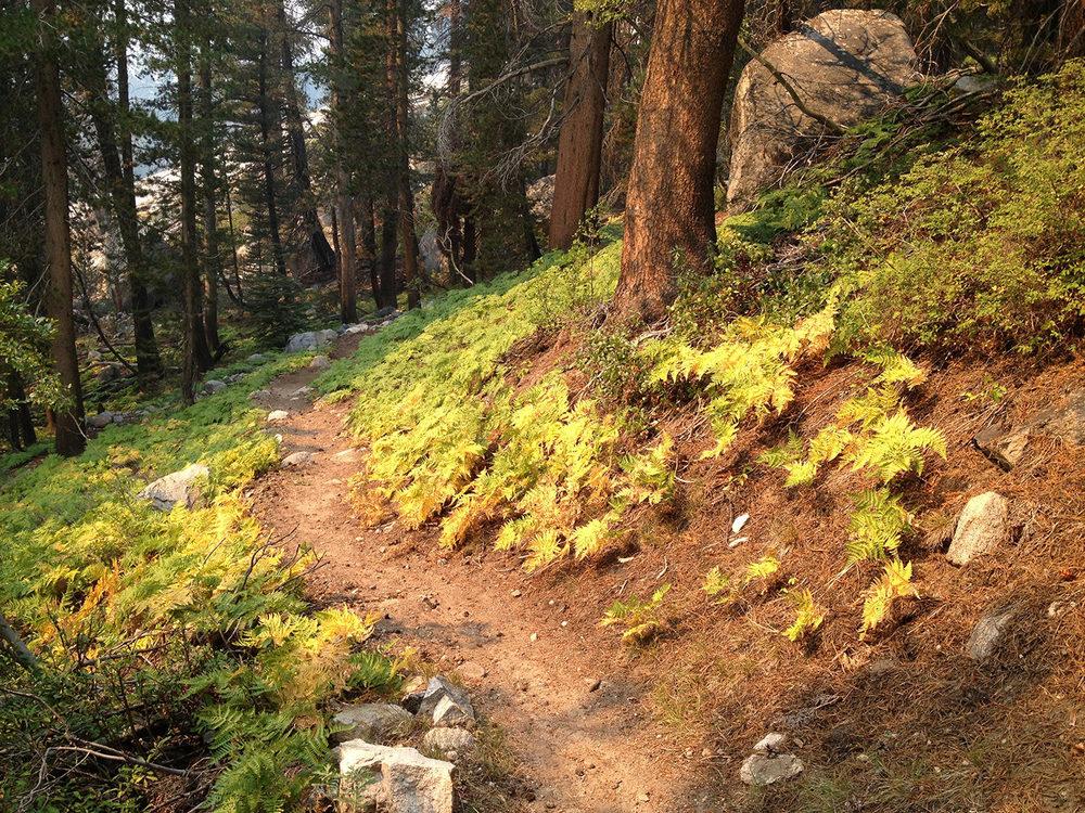 john-muir-trail-2013-4656.jpg