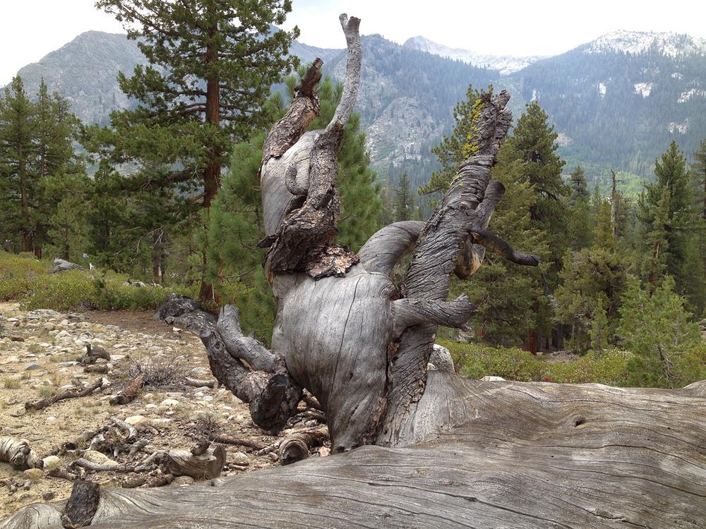 john-muir-trail-2013-4846.jpg