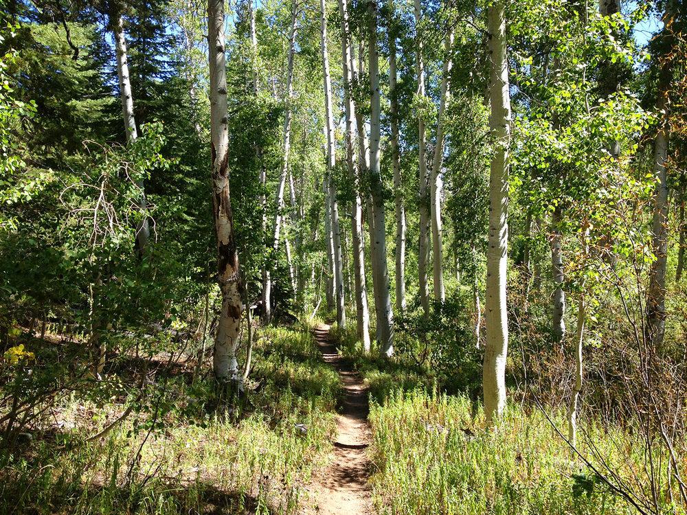 john-muir-trail-2013-5041.jpg