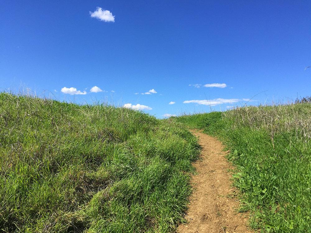 backbone-trail-trailnamebackstroke-3568.jpg