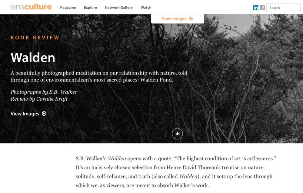 sb walker lens culture