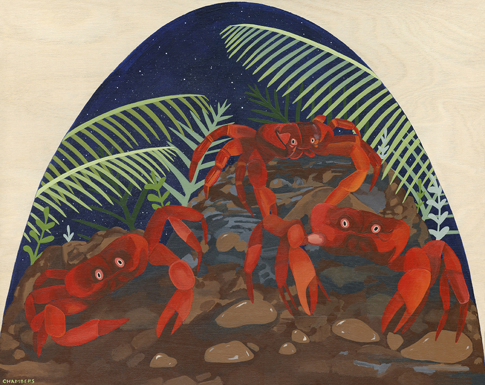 Biodome 6: The Crabs of Christmas Island are Never Crabby